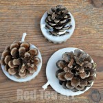 Pinecone craft ideas