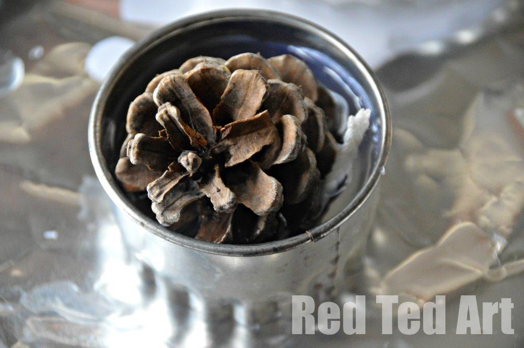 Pinecone crafts fire lighters