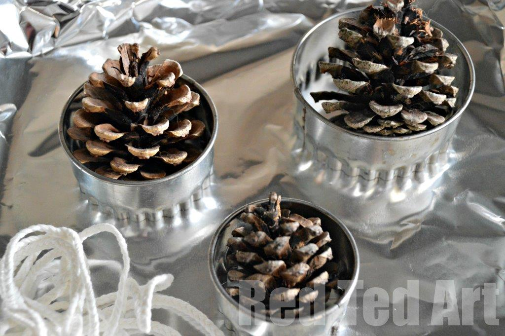Pinecone crafts - fire starters