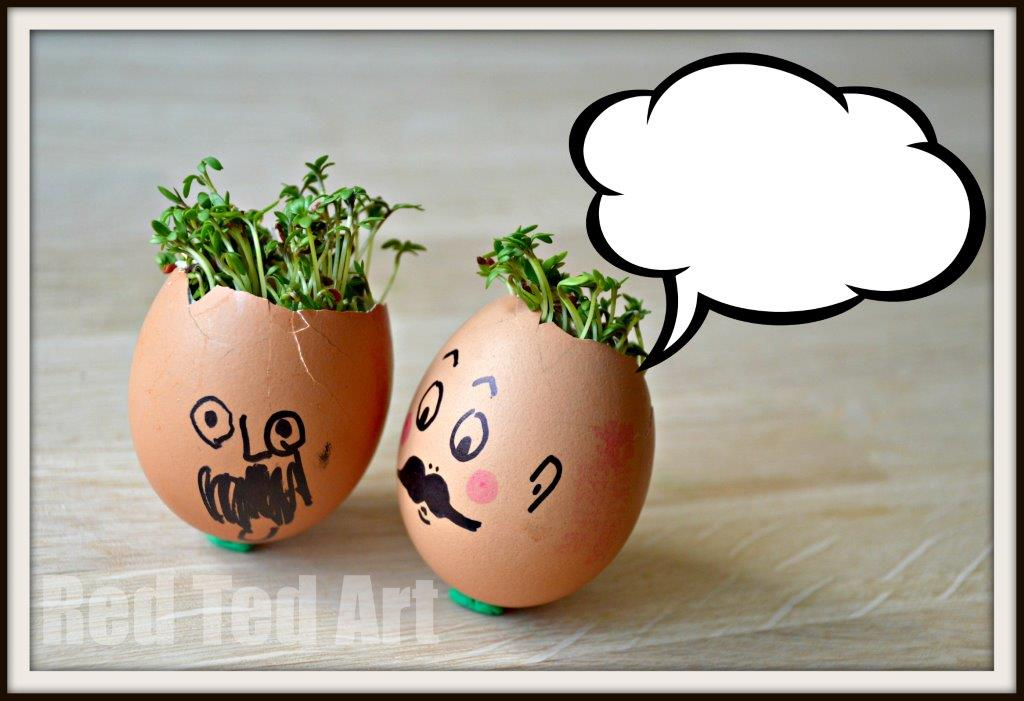 Says one egg to the other egg. Easy Preschool Activity for Spring. Preschool STEAM activity. Cress heads how to. Sprout heads. #spring #preschool #steam