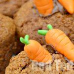 Carrot Cupcake Decorations