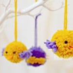 pom pom birds how to