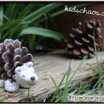 KidsChaosPineConeHedgehog