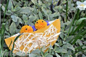 Paper Plate Nests - Preschooler Crafts