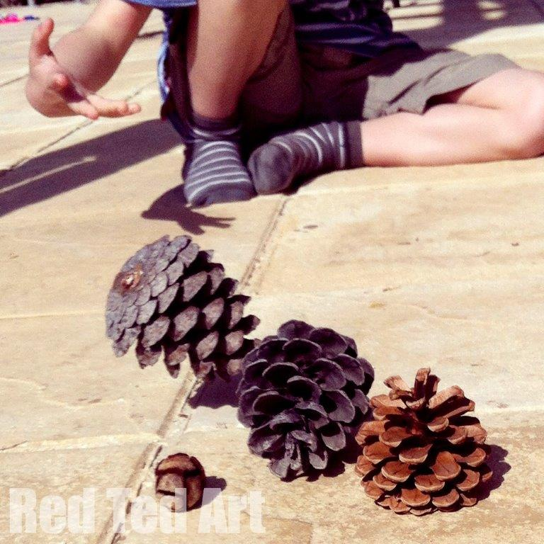 Nature play ideas - 5- Pine cone bowling