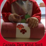 canada day wind sock 1