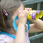 Binocular Craft made from TP Rolls