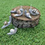 Snail Crafts using Clay