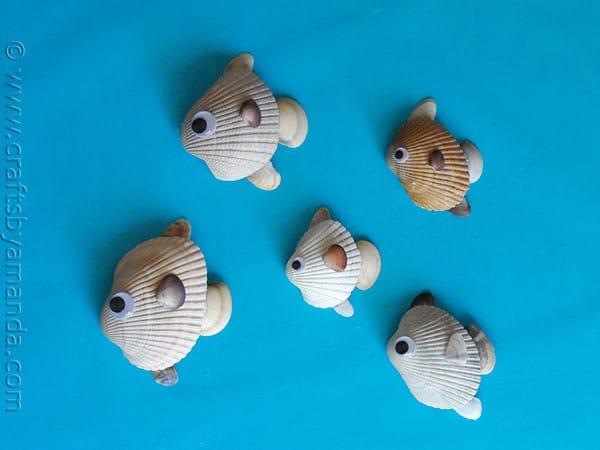 sea-shell-fish1