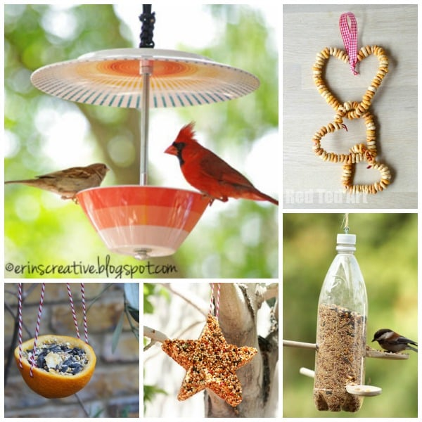 15 Wonderful Bird Feeder Crafts and Ideas - a great way to look after our feather friends this Winter