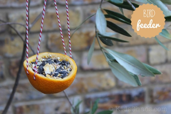 Bird-Feeder-Orange-Peanut-Butter-KidsChaos