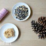 Pine Cone Crafts – Bird Feeders