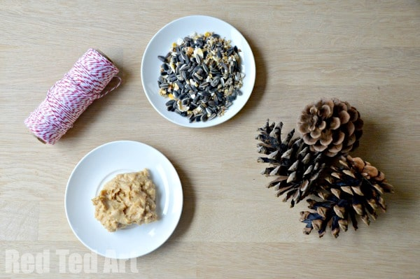 Pine Cone Crafts – Bird Feeders