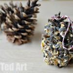 Pine Cone Bird Feeder - Super Simple Activity for Kids