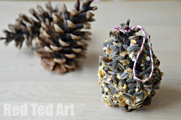 Pine Cone Bird Feeder - Super Simple Activity for Kids
