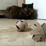 DIY Cat Toy - Make a quick toy for your pet from TP Rolls
