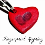 fingerprint keyring square image