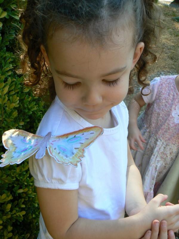 balancing butterflies