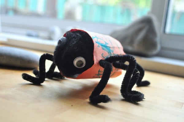 tp roll spider for halloween