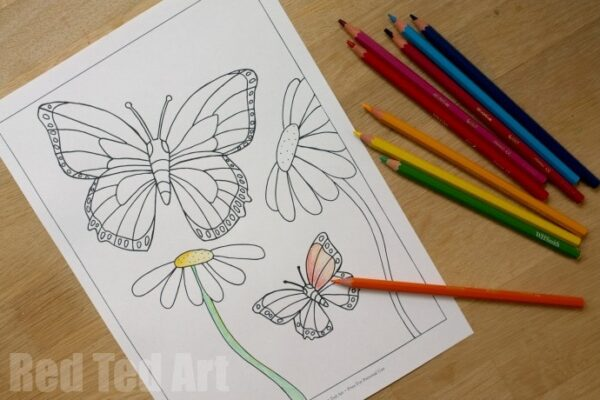 Free Butterfly Colouring Pages for Spring & Summer - Red Ted Art
