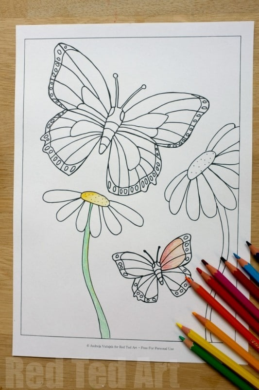 Free Butterfly Colouring Pages for Spring & Summer - Red Ted Art\'s Blog
