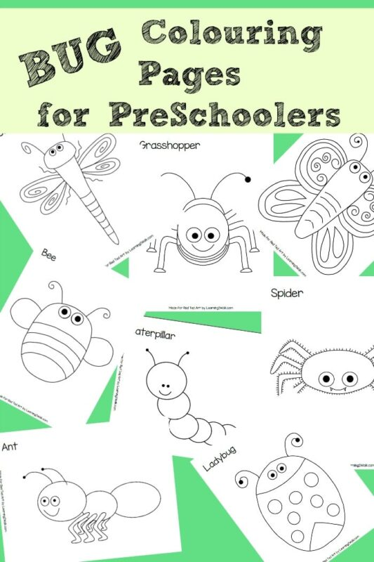 8 fabulous BUG colouring pages, perfect for Preschoolers to explore minibeasts