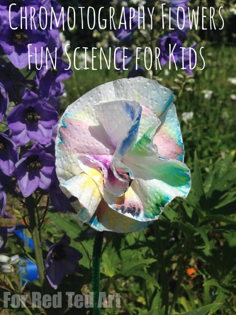 Chromotography flower - separate out the different colours from your ink pens - as if by magic. A wonderful & colourful science come art experiment for kids