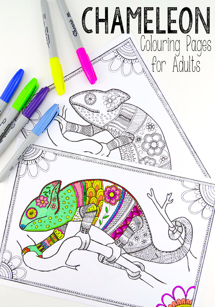 colouring pages for grown ups chameleons red ted arts blog - Chameleon Coloring Pages Print