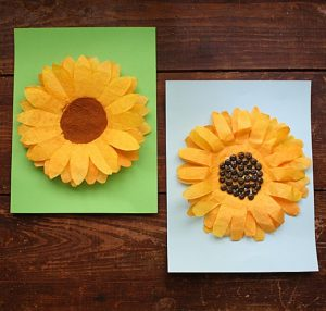coffee-filter-sunflower-squarish