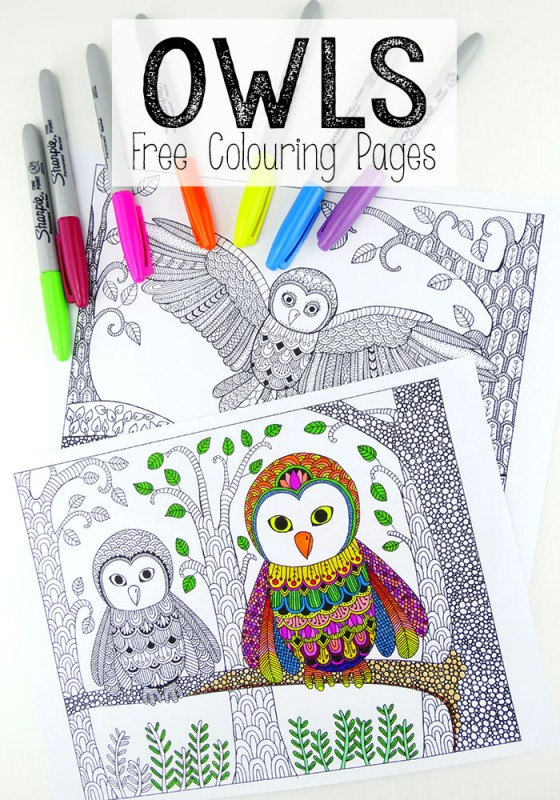 Owl Colouring Pages for Grown Ups - Red Ted Art\'s Blog