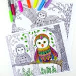Owl Colouring Pages for Grown Ups