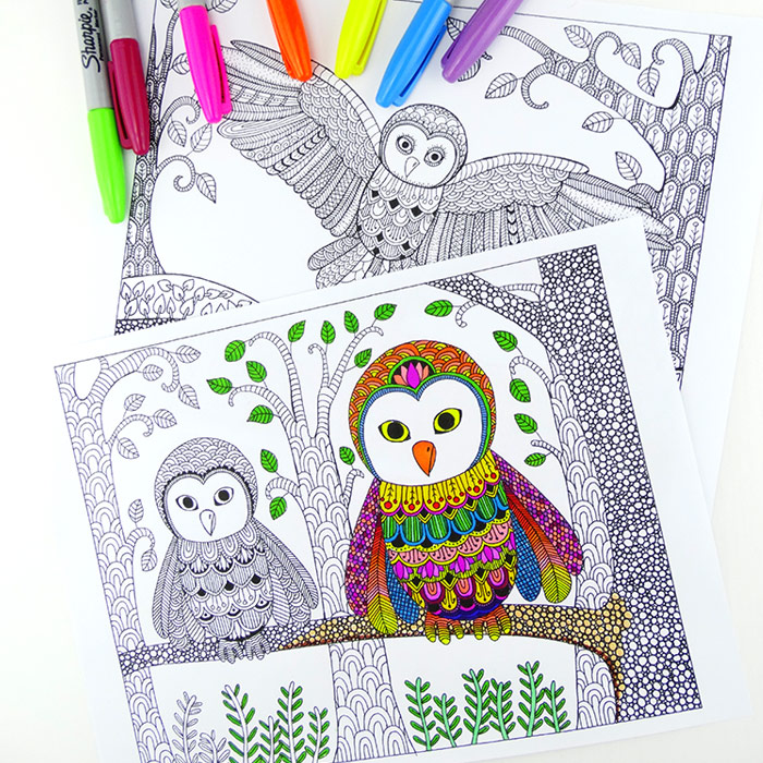 Owl Colouring Pages for Grown Ups Red Ted Art 39 s Blog