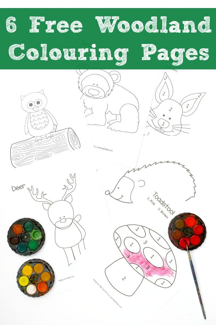 Woodland Colouring Pages Free Red Ted Art S Blog