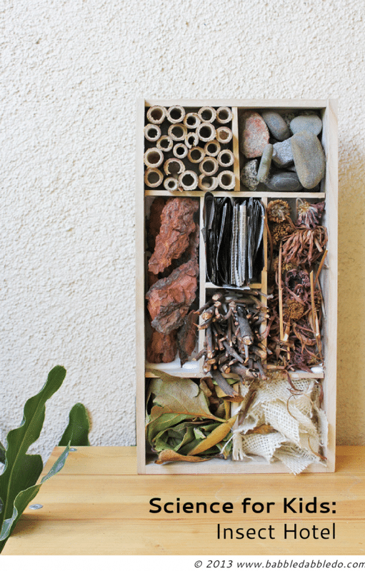 Insect-Hotel-BABBLE-DABBLE-DO-title-3