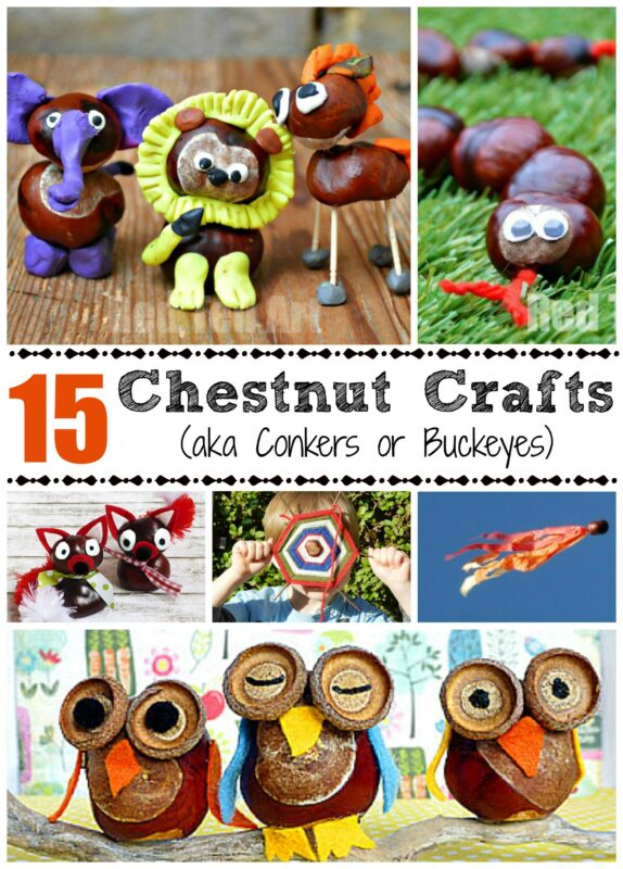 This is one of my most precious childhood memories - crafting with conkers (also known as horse chestnuts or buckeye crafts) - I love the smooth texture and the fun chestnut crafts you can make. Here re 15 lovely ideas for Fall #conkers #buckeyes #autumn #fall #naturecrafts #forestschool