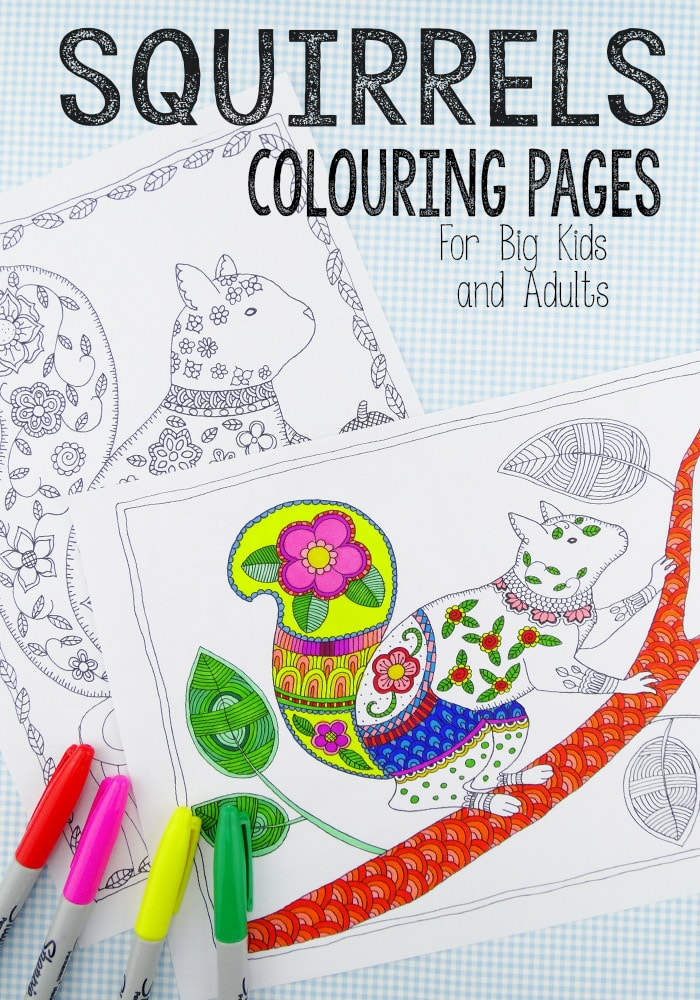Free Squirrel Colouring Pages for Fall (Grown Ups)