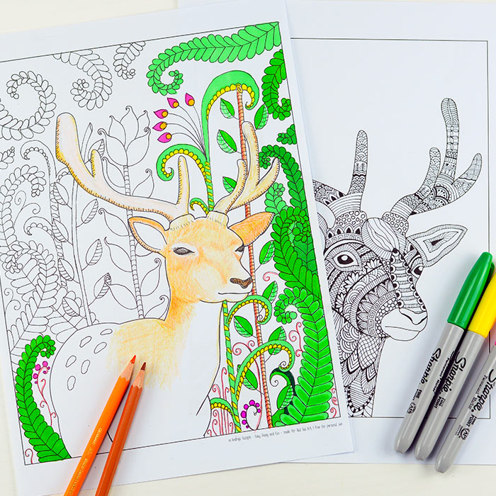 Woodland Coloring Pages Deer