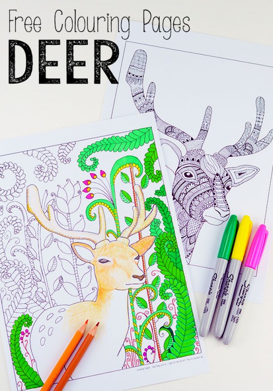Stunning Deer Colouring Pages for grown ups. Simply beautiful. Would look amazing framed or turned into this Season's holiday cards!