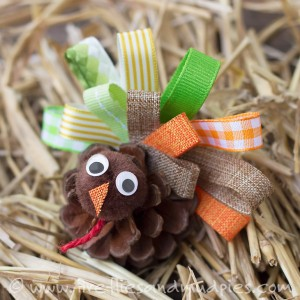 turkey-in-the-straw