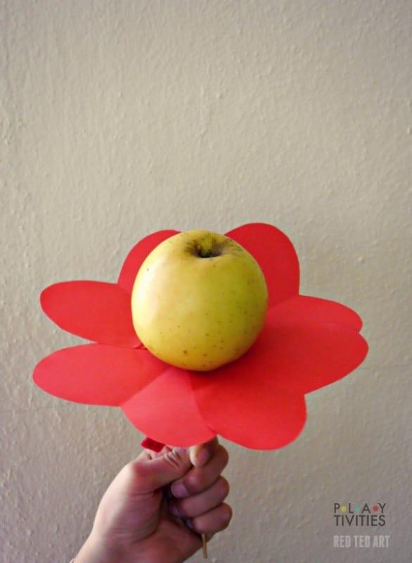 Healthy Valentine's Day Treats - Apple Heart Flowers (2)