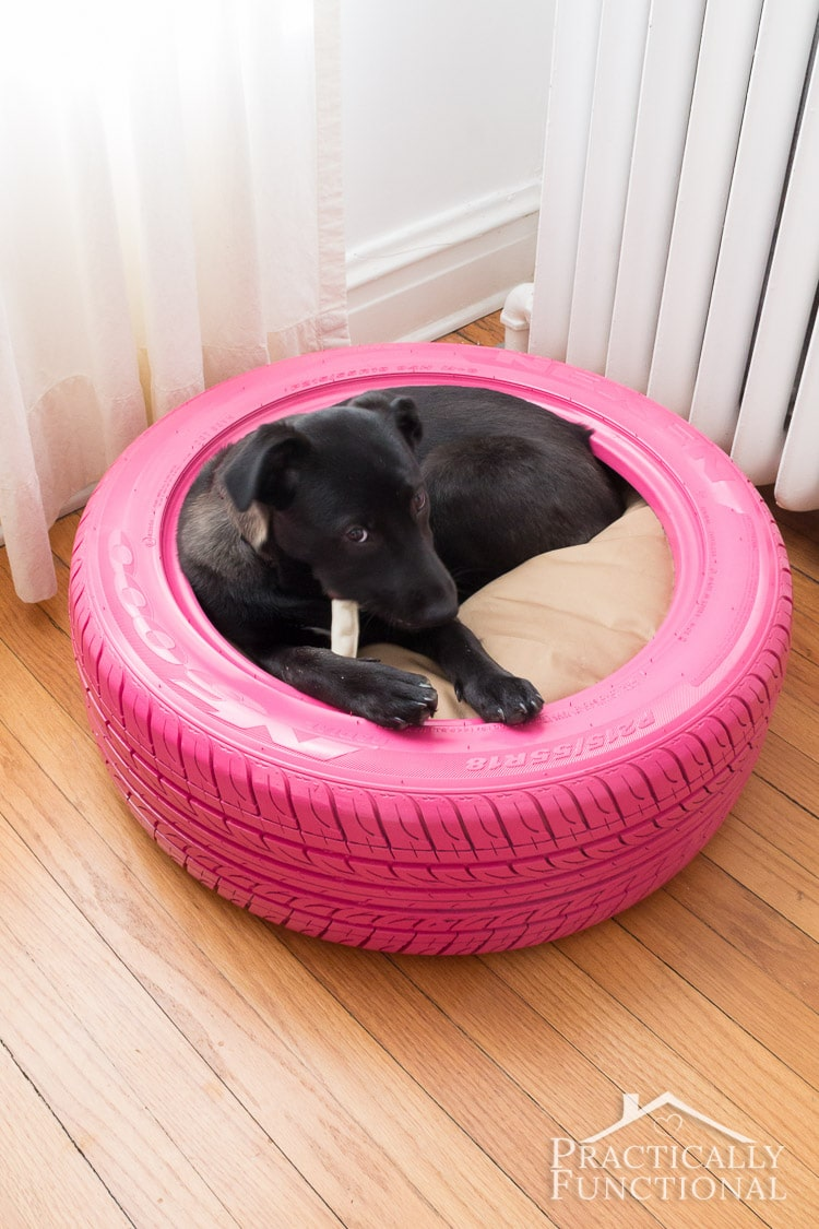 Diy Dog Bed Part - 32: DIY-Dog-Bed-From-A-Tire-2