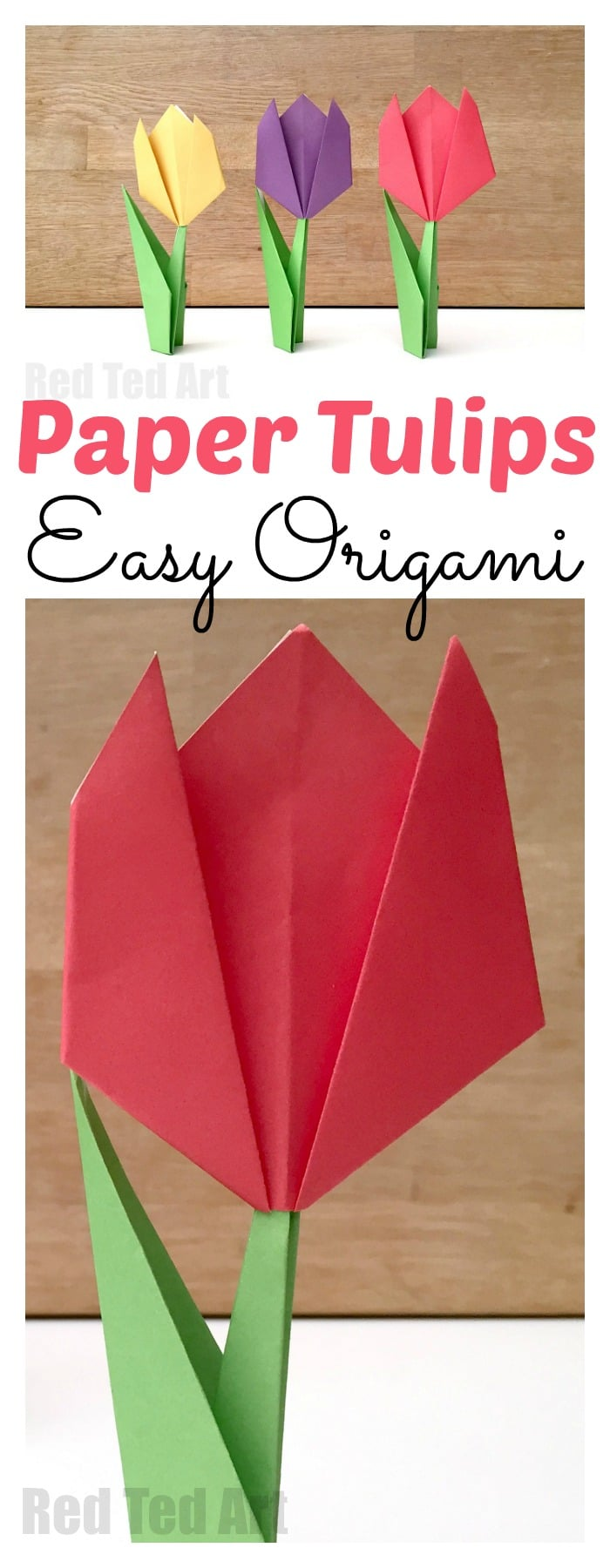Easy Tulip Origami. Teach the kids Origami with this Paper Tulip Origami for Beginners. Easy Beginners Origami #tulip #paperflowers #origami #kidsorigami