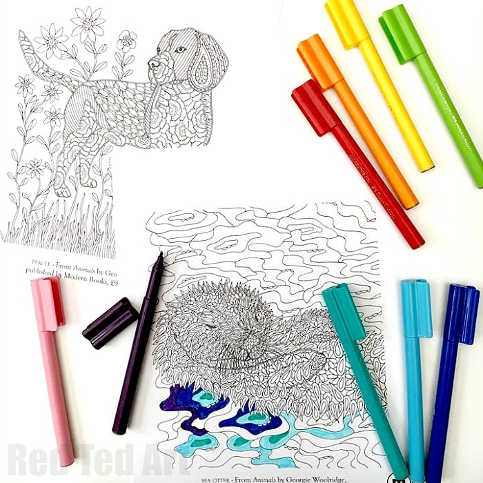 Animal Coloring Pages for Grown Ups