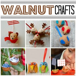 walnut-diy