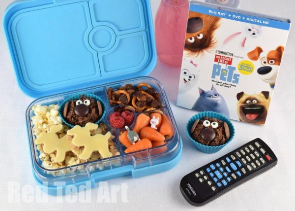 secret-life-of-pets-bento-and-dvd-4a