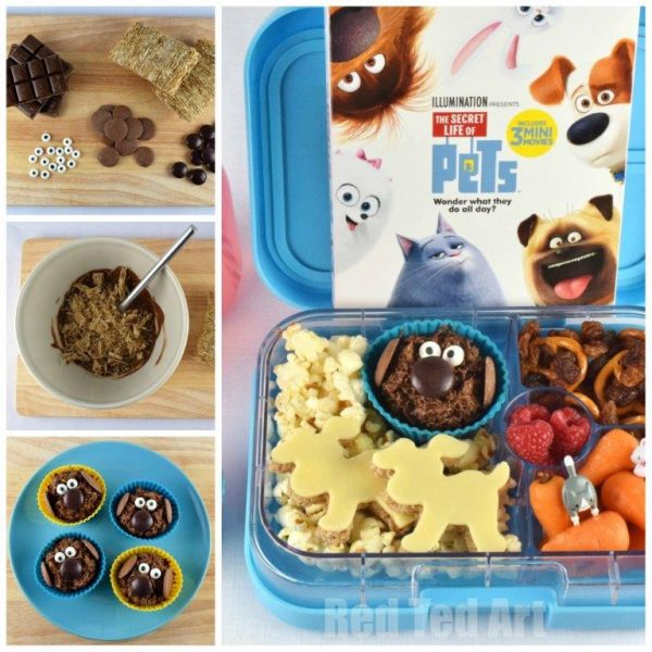 secret-life-of-pets-bento-square-collage-1a