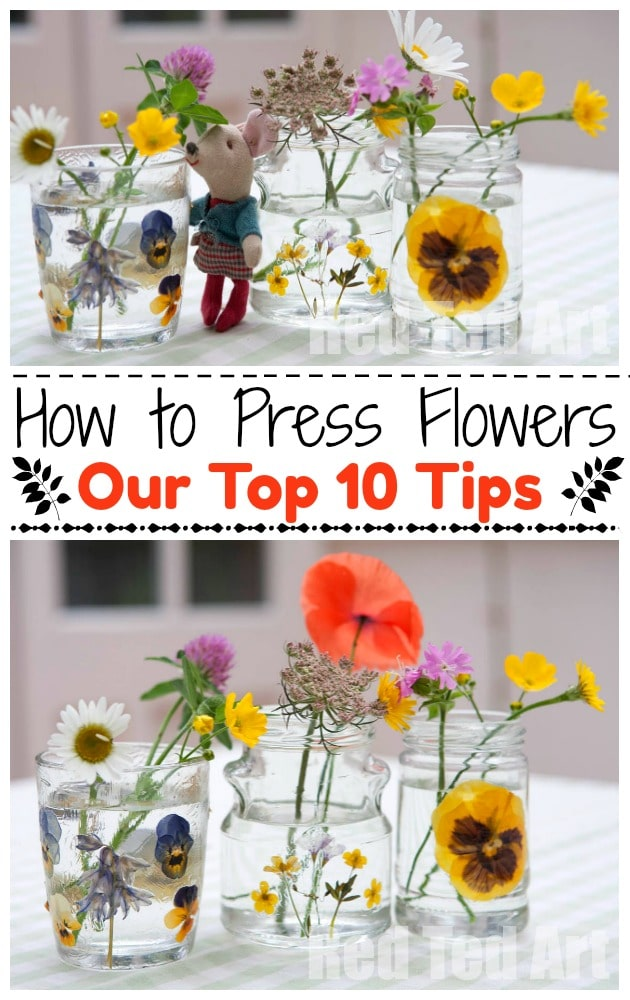 Learn How To Press Flowers with kids today - our TOP 10 TIPS for getting great results! We love Flowers and preserving them. Have a go. #flowers #pressedflowers #howto #kids #summer