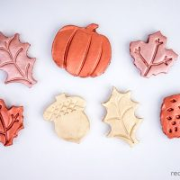 DIY Clay Leaf Magnets