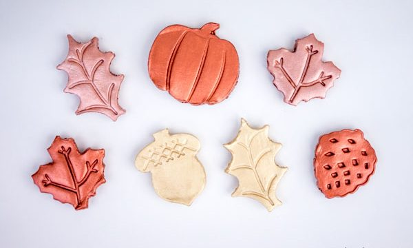 DIY Clay Leaf Magnets