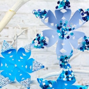 Another Gorgeous Paper Snowflake Are These Lovely 3D Snowflakes From Kids Crafts Room Just Beautiful